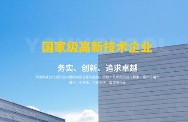 洋浦科技响应式网站网站设计案例