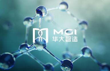 深圳华大智造科技有限公司网站设计案例