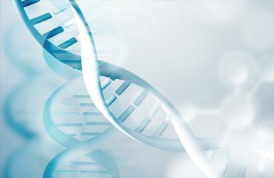 亚洲合成生物学协会