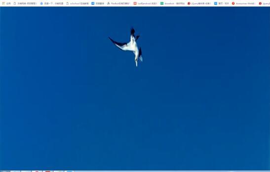 网站视频展示效果图